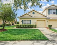 8977 Iron Oak Avenue, Tampa image