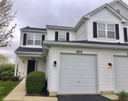 924 Genesee Drive, Naperville image