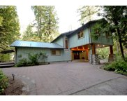 57020 NORTH BANK  RD, McKenzie Bridge image