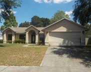 5203 Mill Stream Road, Ocoee image
