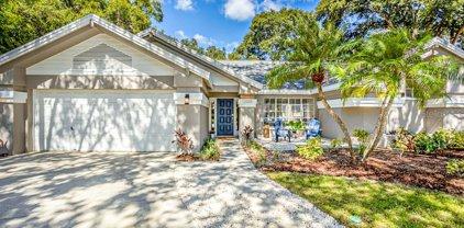 1523 Sand Hollow Court, Palm Harbor