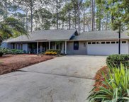 28 Winding Trail Lane, Hilton Head Island image