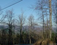 Fire Tower  Road, Bostic image