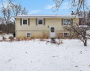 10038 Fish Road, Belding image