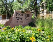17346 Nature Walk Trail Unit 305, Parker image