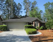 135 Myrtle Trace Dr, Conway image