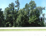 TBD Highway 501, Conway image