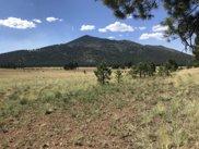 17369 Crowley Trail, Flagstaff image