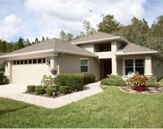 1712 Orchardgrove Avenue, New Port Richey image