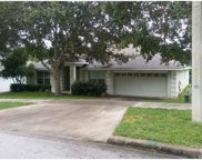 653 Winding Lake Drive, Clermont image