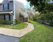 16501 Lake Brigadoon Circle Unit 16501, Tampa image