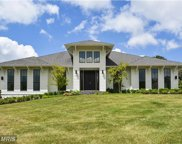 23035 LAVENDER VALLEY COURT, Ashburn image