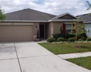 11131 Running Pine Drive, Riverview image