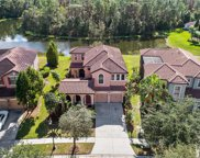 20321 Chestnut Grove Drive, Tampa image