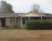 622 University Forest Circle, Conway image