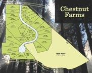 1 Chestnut Way Unit #28, Lee image