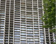 3200 North Lake Shore Drive Unit 611, Chicago image