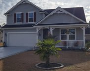 816 Wilcot Branch Ct, Conway image