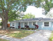 7401 Fieldcrest Avenue, Winter Park image
