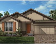 13694 Killebrew Way, Winter Garden image