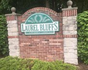 1543 Laurel Bluffs, Hazelwood image