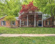 14824 Greenleaf Valley  Drive, Chesterfield image
