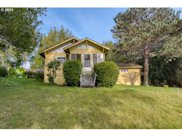 55865 FINLEY  LOOP, Coquille image