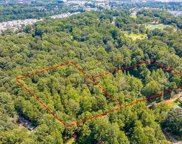 10687  Louthan Hill Drive, Indian Land image