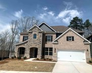 2721 River Cane Way Dr, Buford image