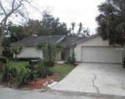 4510 Whitworth Lane, Tampa image