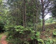 LT 16 Ivy Log Estates, Blairsville image