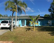 315 NW 15th ST, Cape Coral image
