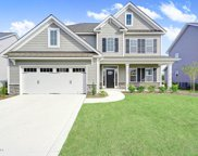 1133 Canopy Way, Wilmington image