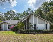 17130 Laurelin CT, North Fort Myers image