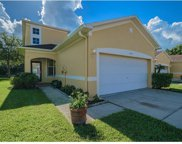 11015 Blaine Top Place, Tampa image