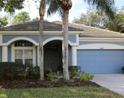 4442 Sawgrass Drive, Palm Harbor image