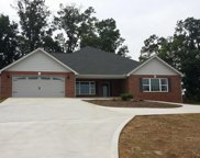 1131 Houston Springs Rd, Greenback image