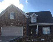 11400 Willow Branch Dr, Louisville image