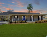 42 Howell Hill Road, Fayetteville image