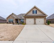 113 Colony Cove Drive, Meridianville image