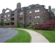 316 Beaver St Unit 106, Sewickley image