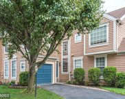 21127 CROCUS TERRACE, Ashburn image