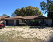 11122 Maderia Street, Spring Hill image