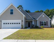9556 Bald Cypress Ct., Myrtle Beach image