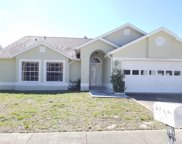 319 Wood Ibis Avenue, Tarpon Springs image
