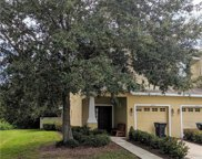 12804 Belvedere Song Way, Riverview image