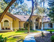 360 10th Avenue S, Safety Harbor image