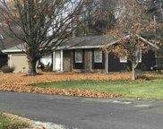 11363 Birchway Drive, Osceola image