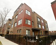622 West 16Th Street Unit 1, Chicago image