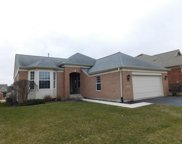 9245 Tandragee Drive, Orland Park image